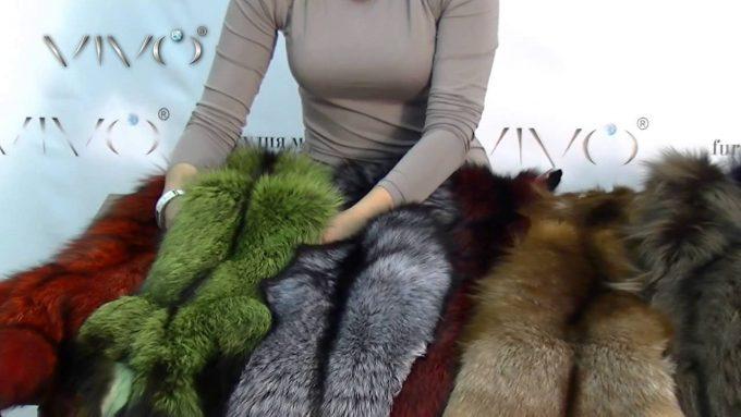 цвет меха может быть самым разнообразным